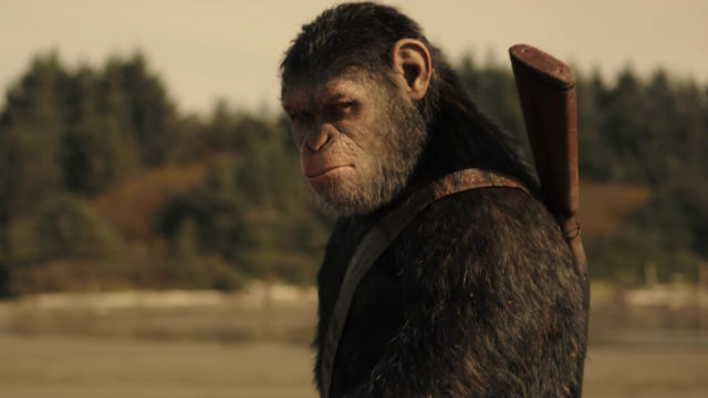 """I marvel at the way everything clicks in """"War for the Planet of the Apes,"""" particularly the acting. The ape performances are brought to life with motion-capture technology and CGI […]"""